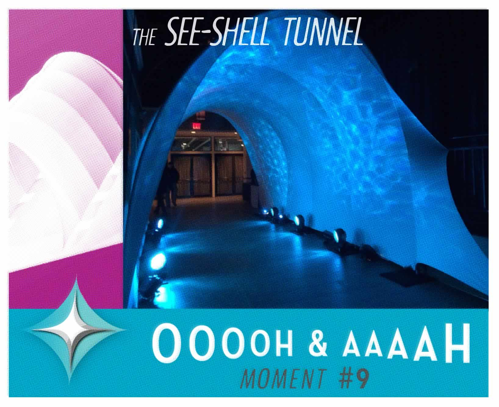 The SeeShell Tunnel