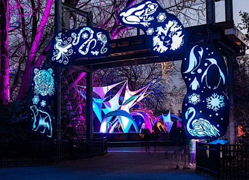 Festival of Lights Holiday PhillyZoo-Entry-Twilight experiential zoo tour
